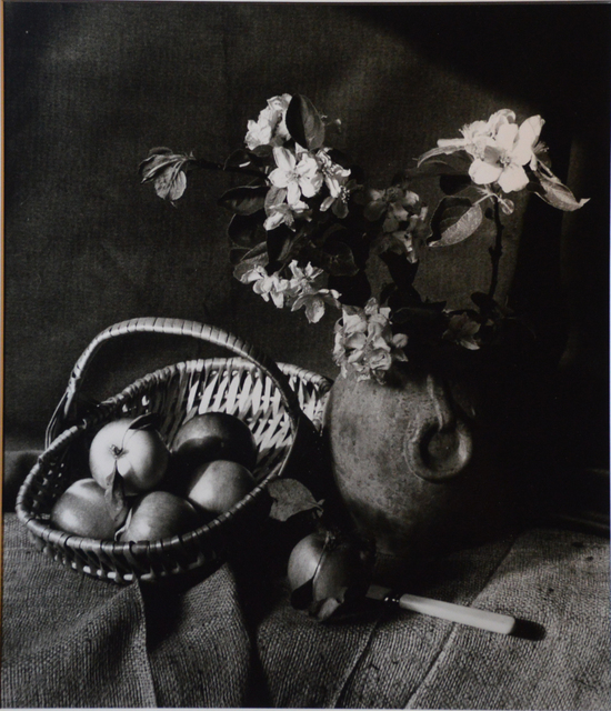 , 'Still Life : Flowers and Fruit,' 2018, The Galleries at Salmagundi