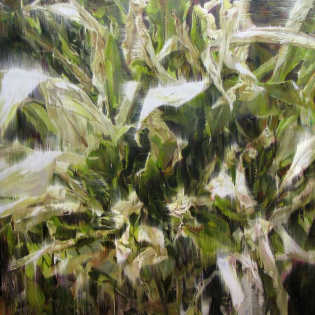 , 'Dry Plant-17014,' 2017, Gallery Baton