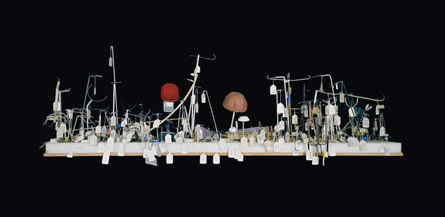 , 'Ship II (MUSEUM PIECES) ,' 1999, Anglim Gilbert Gallery