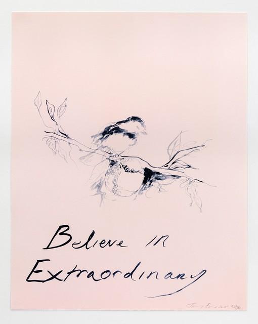 , 'Believe in Extraordinary,' 2015, Artsnap