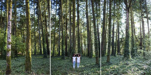 , 'Twins,' 2014, Carlos Carvalho- Arte Contemporanea