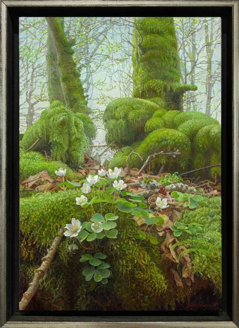 , 'Wood Sorrel in the Fury Forest,' 2018, ARCADIA CONTEMPORARY