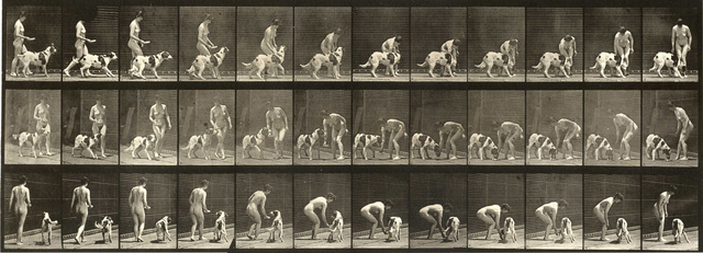 , 'Plate 449. Feeding a dog.,' 1887, Laurence Miller Gallery
