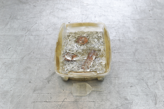 , 'Kitty Litter Glitter,' 2018, Amos Eno Gallery