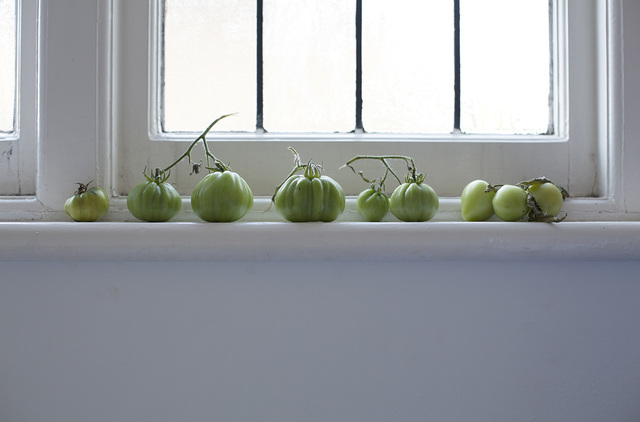 , 'The Tomatoes We Planted Together,' , Francesca Maffeo Gallery