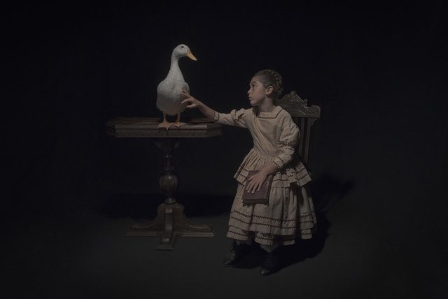 , 'The Waterfowl,' 2017, Cynthia Corbett Gallery