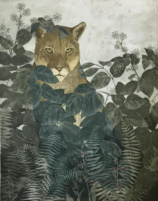 , 'Mountain Lion in Elk Clover, Sword Fern and Stream Orchid,' 2015, MiXX projects + atelier