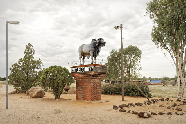 , 'A  Brahman Bull statue stands sentinel at the town of Gobabis, its gonads protected by razor wire after 'molestation' by school children. Kalahari, Namibia,' 2019, SMAC