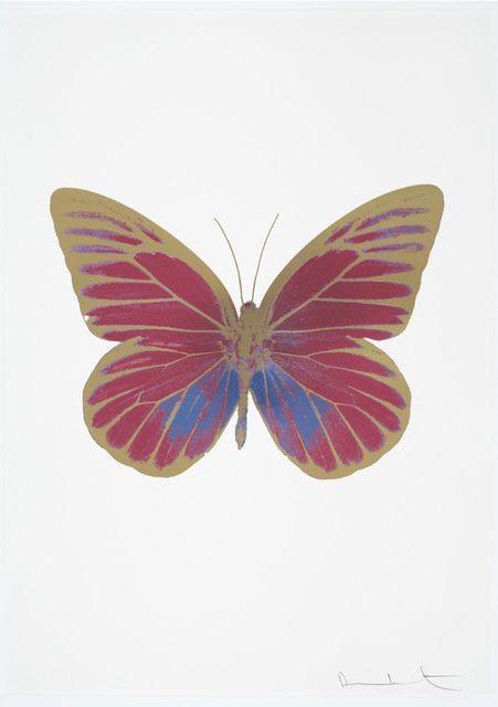 , 'The Souls I - Loganberry Pink - Cornflower Blue - Cool Gold,' 2010, Samuel Owen Gallery