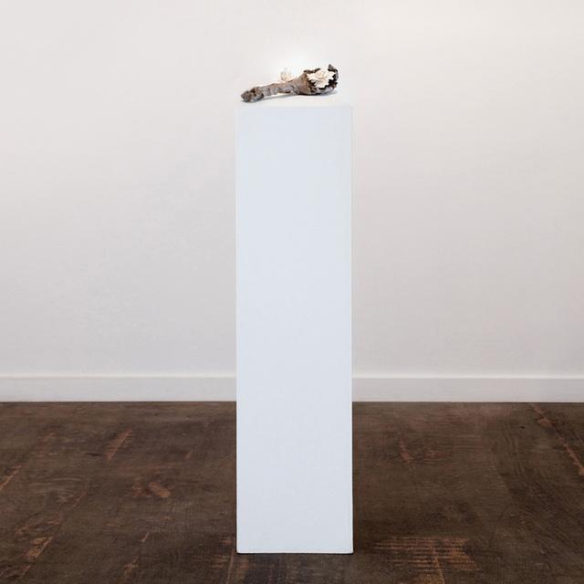 , 'Ladle,' 2017, Anima-Mundi