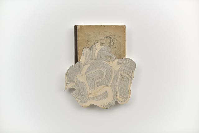 , 'The Loom of Language in Modern Drawings,' 2015, Martin Kudlek