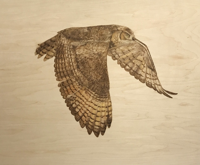 Alexandra Bowers, 'Great Horned Owl', 2019, {9} The Gallery