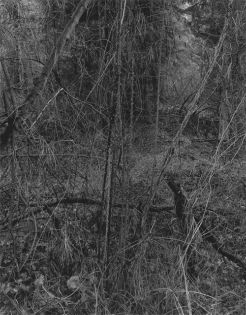 Gilbert Fastenaekens, 'Untitled #006', 1988-1996, Galerie Les filles du calvaire