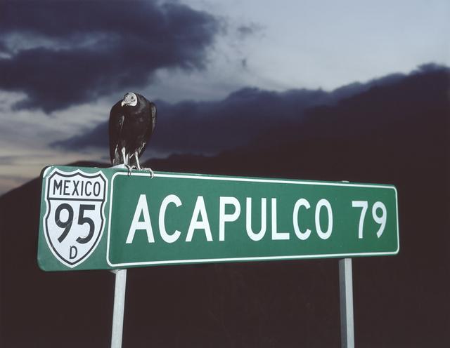 Miguel Calderón, 'Acapulco 79', 2008, kurimanzutto