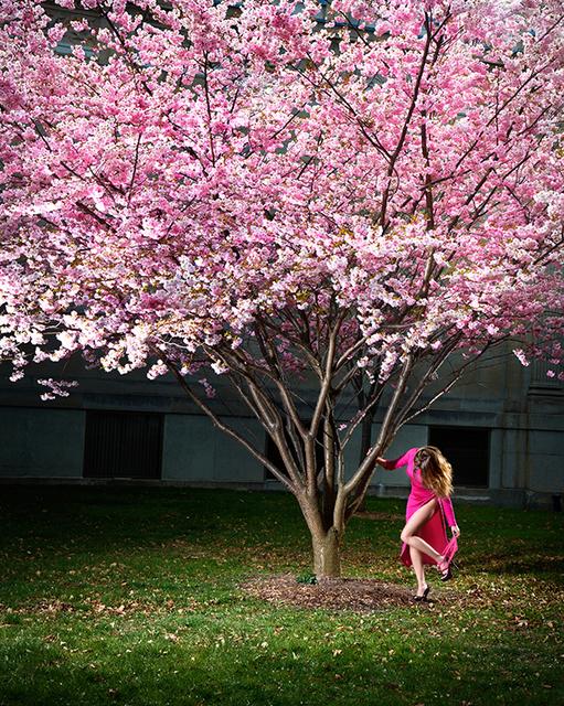 David Drebin, 'Pink Moment', 2012, Contessa Gallery