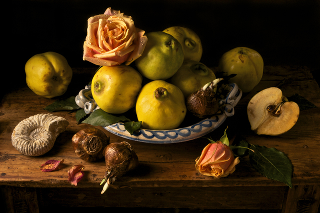 Paulette Tavormina, 'Quince, after G.G.,' 2009, Robert Klein Gallery