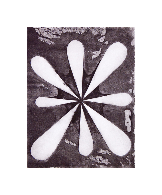 , 'Stella Nova,' 2014, Manneken Press