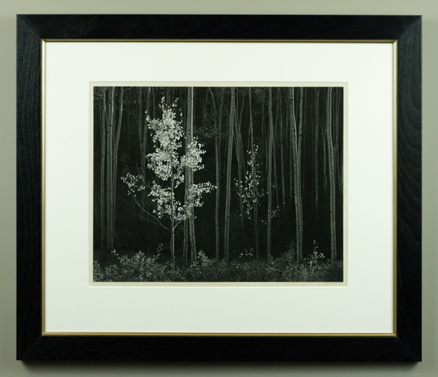 Ansel Adams, 'Aspens, Northern New Mexico', 1958, Seagrave Gallery