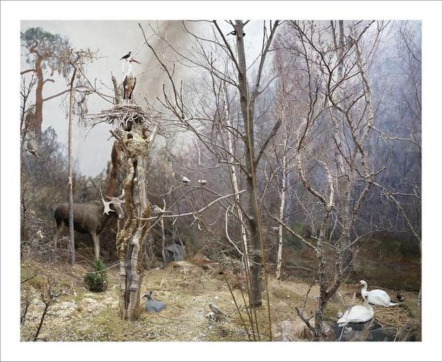 , 'Panterfällen I,' 2016, Art Bastion Gallery