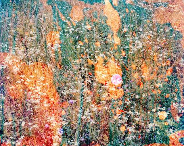 Tealia Ellis Ritter, 'Reenactment 73 (Green Throw)', 2013, Egg Collective