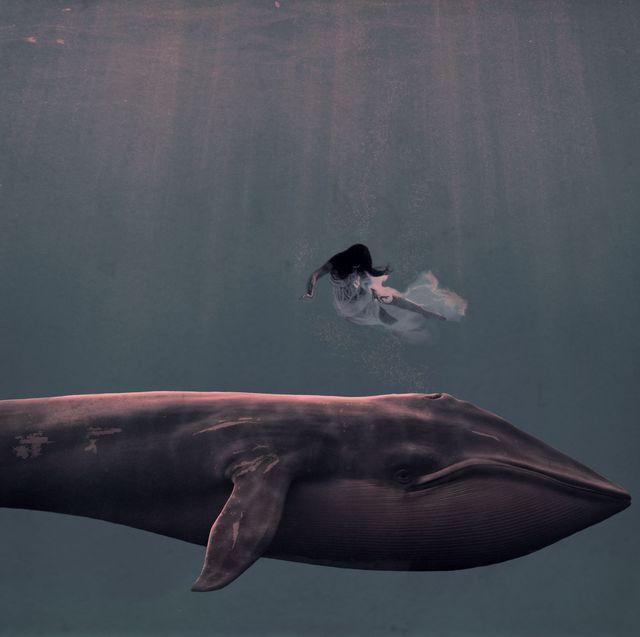 , 'my dreaming was deep,' 2016, M.A. Doran Gallery