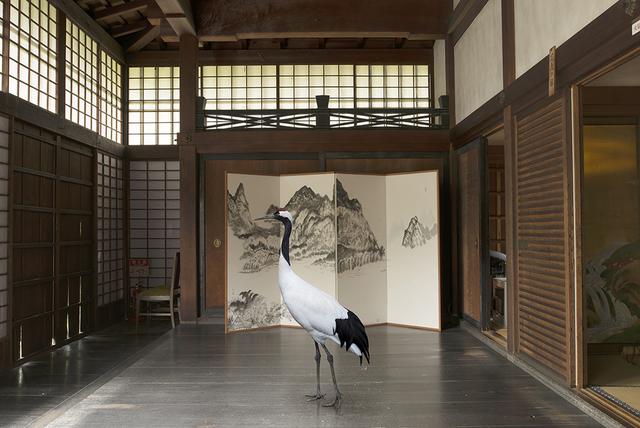 , 'Towards Nirvana, Shunko- in Temple , Tokyo,' 2015, Galerie Les filles du calvaire