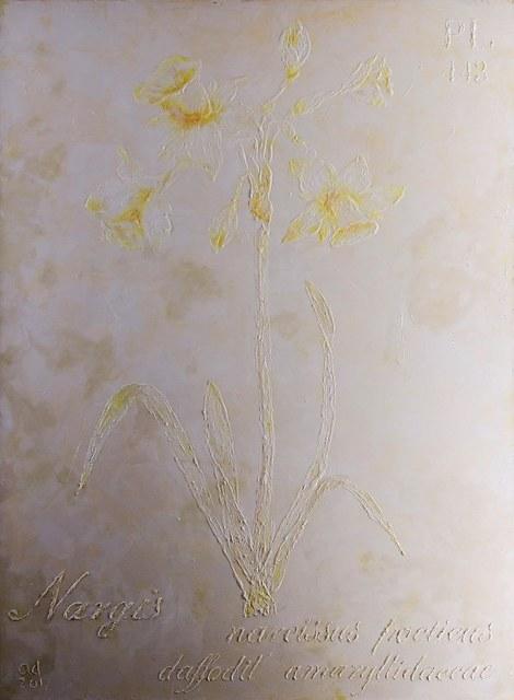 , 'Nargis 1,' 2016-2017, Exhibit 320