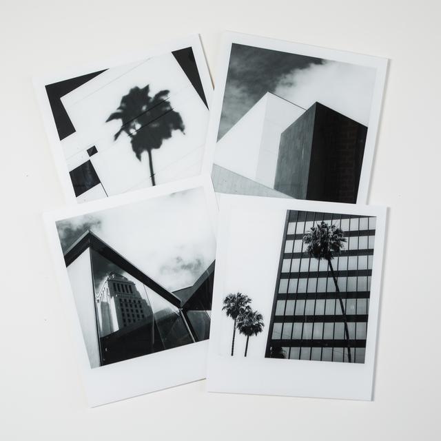 , 'Palm Angeles,' 2019, Feeny's Photo