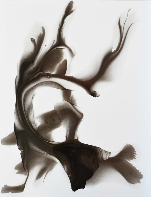 , 'Quetzal,' 2015, Conduit Gallery