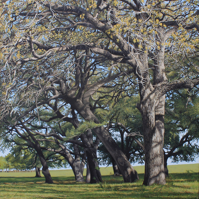 , 'Hickory Bend Trees,' , Davis Gallery & Framing