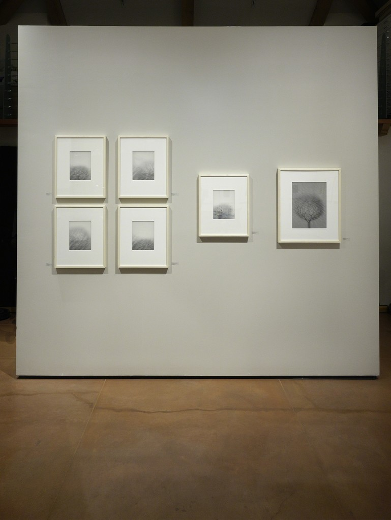 Back Wall – Chaco Terada installed at photo-eye Gallery, Santa Fe, NM.