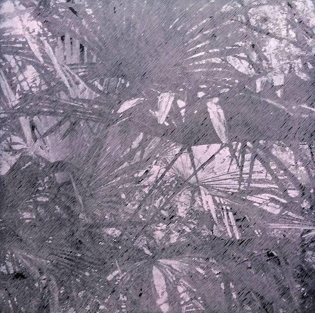 , 'Tristes tropiques #2,' 2015, YUKI-SIS