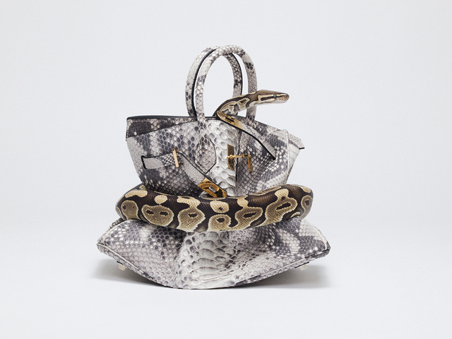 , 'Python Birkin,' 2016, Imitate Modern