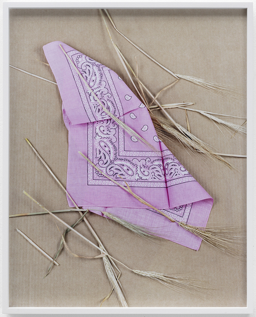 , 'Paisley and Wheat Pink,' 2013, KÖNIG GALERIE