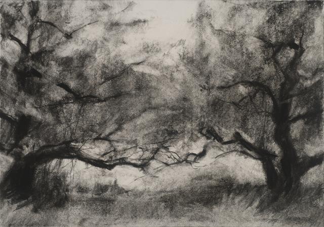 , 'Orchard #3,' , Dowling Walsh