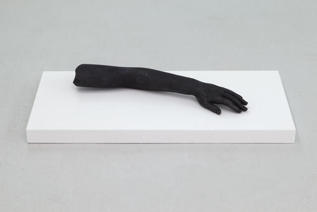 , 'Brazo (arm),' 2014, Casey Kaplan