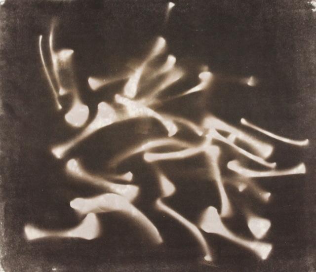 Rashid Johnson, 'Untitled Chicken Bones', 1999, Aaron Galleries