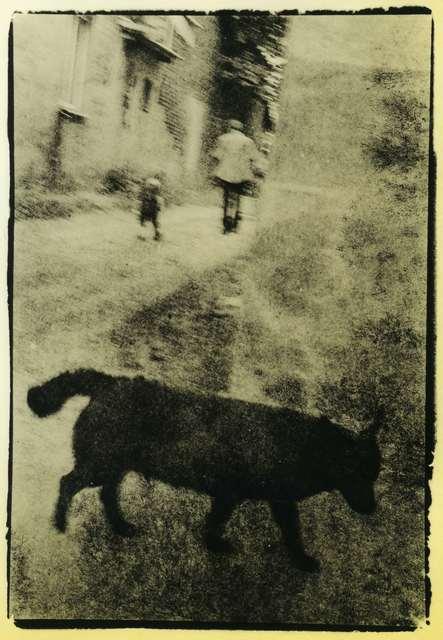""", 'From the """"Pscychodelic walk"""" series.,' 2011, Open Gallery"""