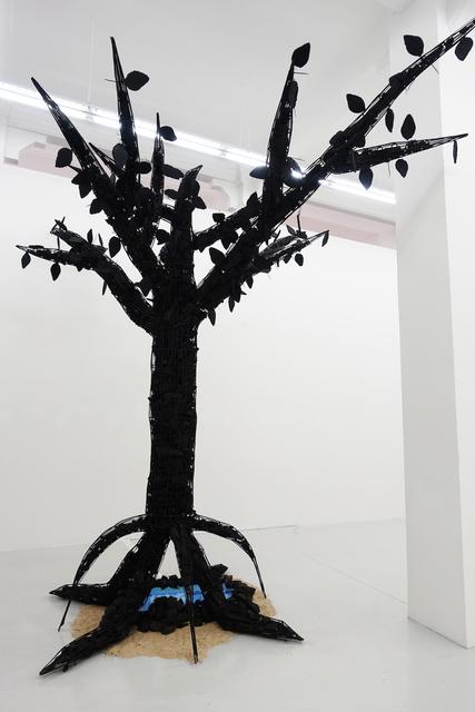 , 'Mangrave I,' 2016, Yavuz Gallery