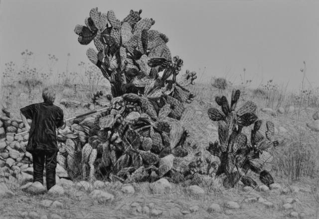 , 'Cactus Harvest #2,' 2017, Zawyeh Gallery