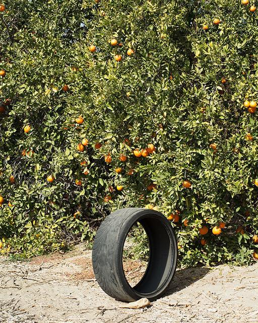 , 'Citrus #1,' 2013, Robert Morat