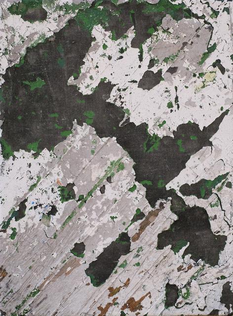 , 'Yours Is The Earth,' 2016, Fernando Luis Alvarez Gallery