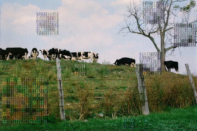 Diane Meyer, 'New Jersey VII', 2012, KLOMPCHING GALLERY