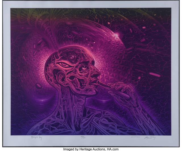 Alex Grey, 'Bicycle Day', 2016, Heritage Auctions