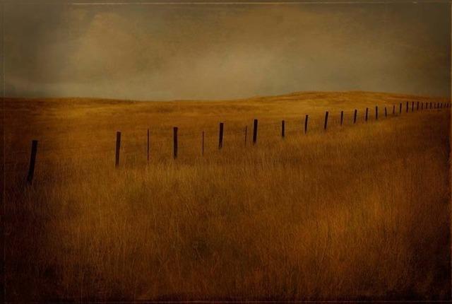 Jack Spencer, 'Fenceline,' 2005, Contessa Gallery