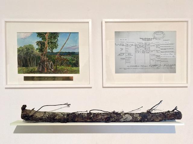 , 'Memorial de um pé-de-pera,' 2017, Baró Galeria