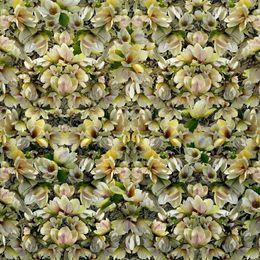 Lisa Frank, 'Magnolias Breaking Pattern ', 2017, Carrie Haddad Gallery