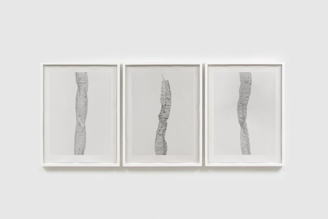 , 'Skin #1 - #3,' 2018, Martin Asbæk Gallery