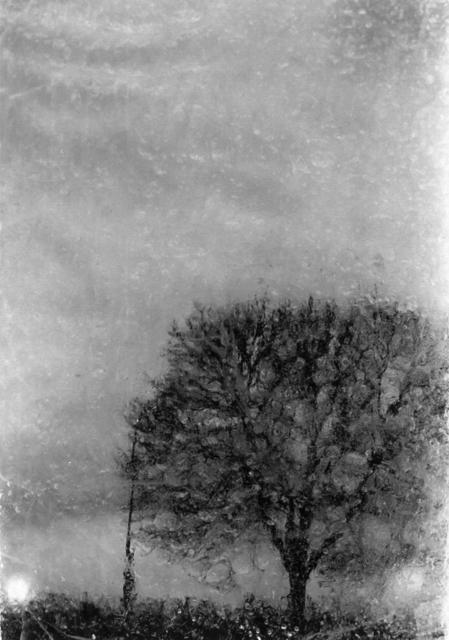 , 'PN # 642-636,' 2014, Photo12 Galerie