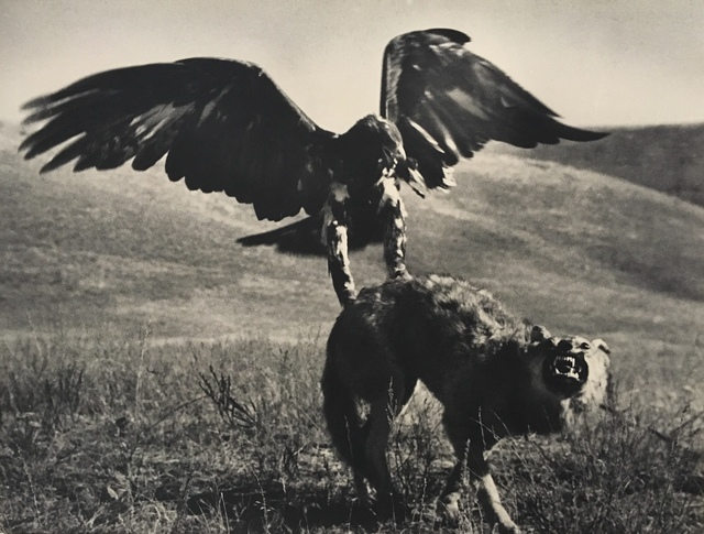 , 'Hunting with Golden Eagle, Kazakhstan, 1930's,' Printed before 1960's, Atlas Gallery